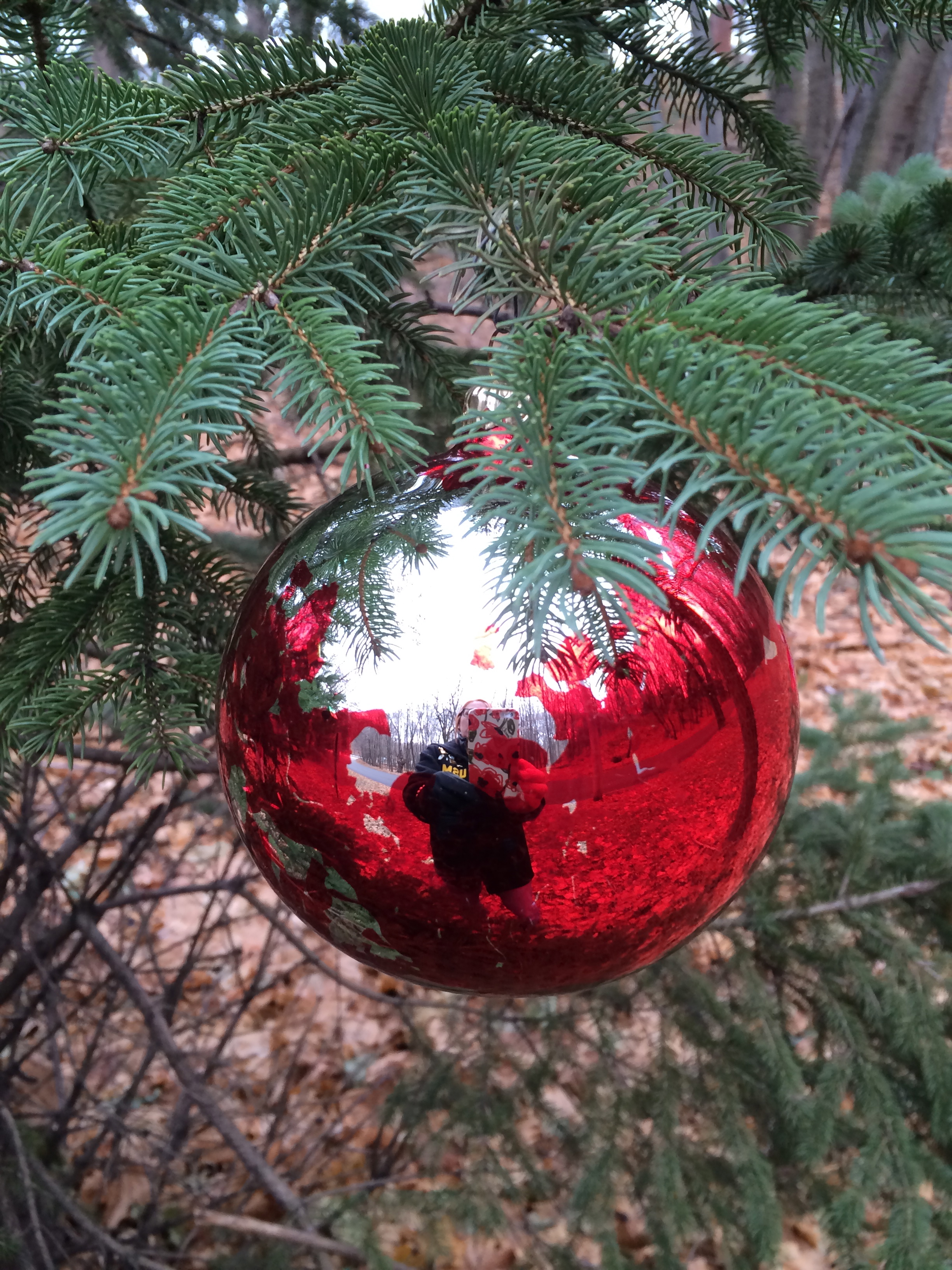 O, Christmas Tree! How lovely are your branches! – hugsnblessings