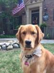 We have even named our dog after Helen Kowalska!